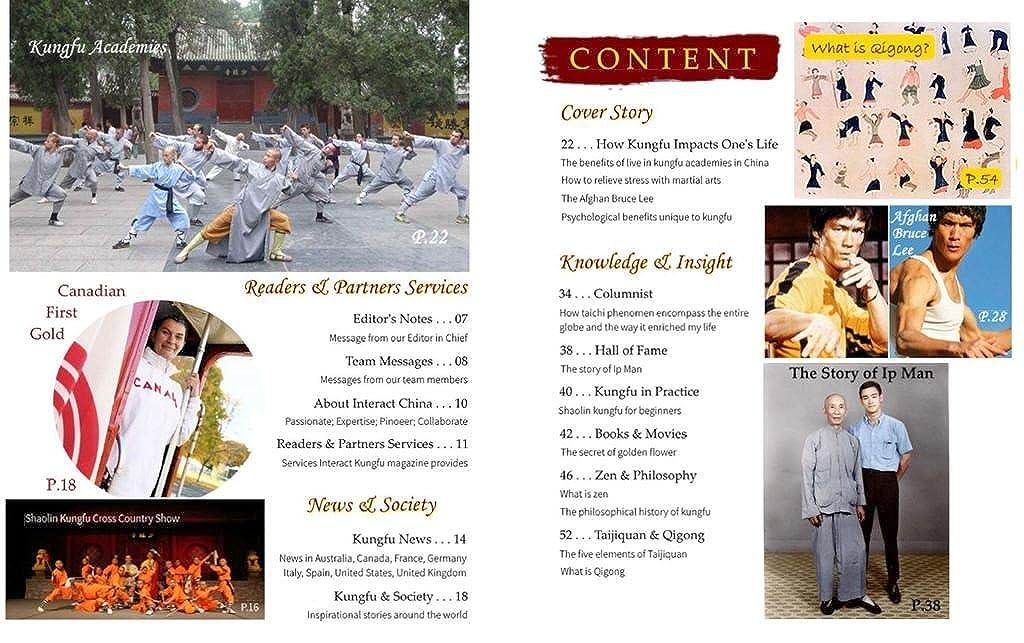 Tradizionale Giacca Kung Fu Arti Marziali Cinese in 100/% cotone XS-XL o Su Misura #121