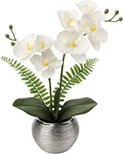 Artificial Orchids Flowers Small Faux Orchid Plant Arrangements in Silver Ceramic Pot Silk Fake Phalaenopsis Flowers for Home Office Table Centerpiece Wedding Party Decor