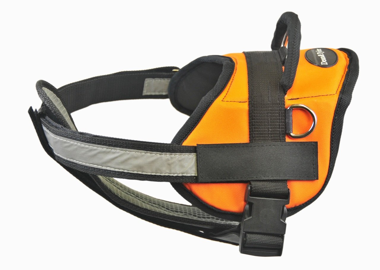 Dean & Tyler 28-Inch to 38-Inch Clear Patches Dog Harness with Padded Reflective Chest Straps, Medium, orange Black