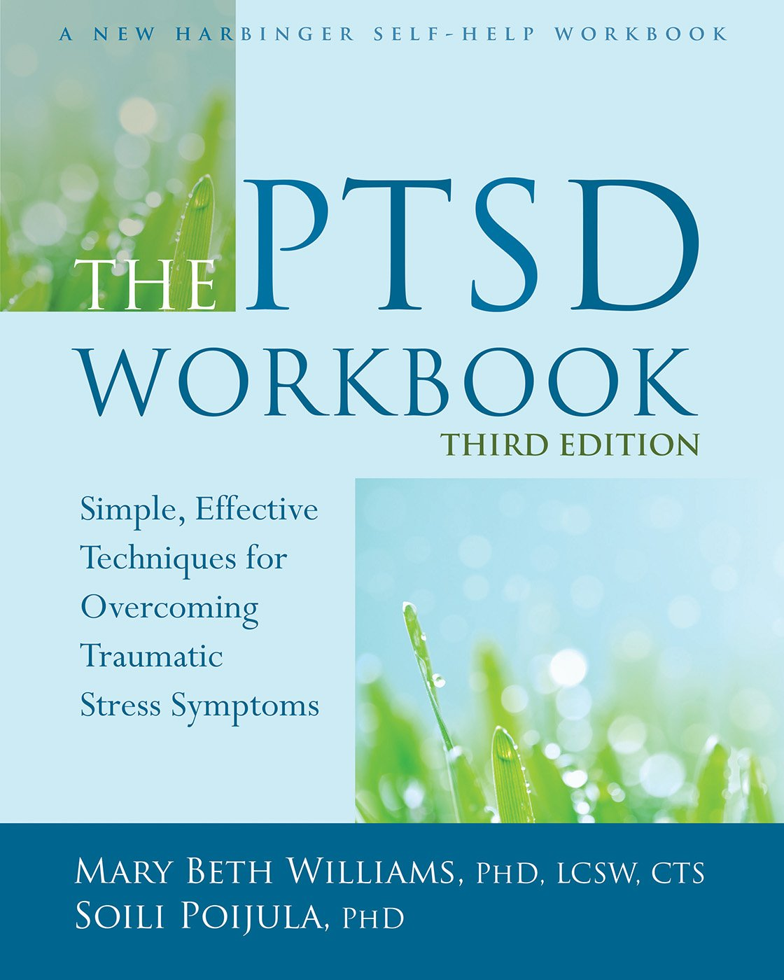The PTSD Workbook  Simple Effective Techniques For Overcoming Traumatic Stress Symptoms  English Edition