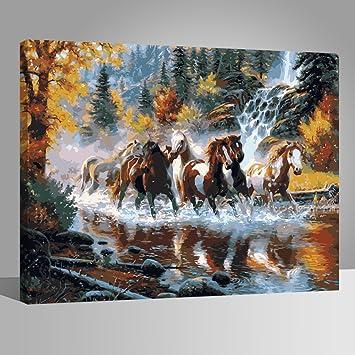 Rihe Holzrahmen Malen Nach Zahlen Diy ölgemälde Pferde über Dem