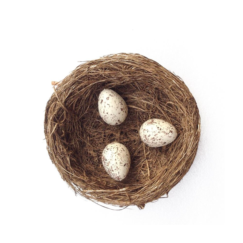Mud Pie Grass Bird Nest With 3 Robin Eggs Easter Spring Home Yard Garden Decor Gardeningwill AHGRD000338
