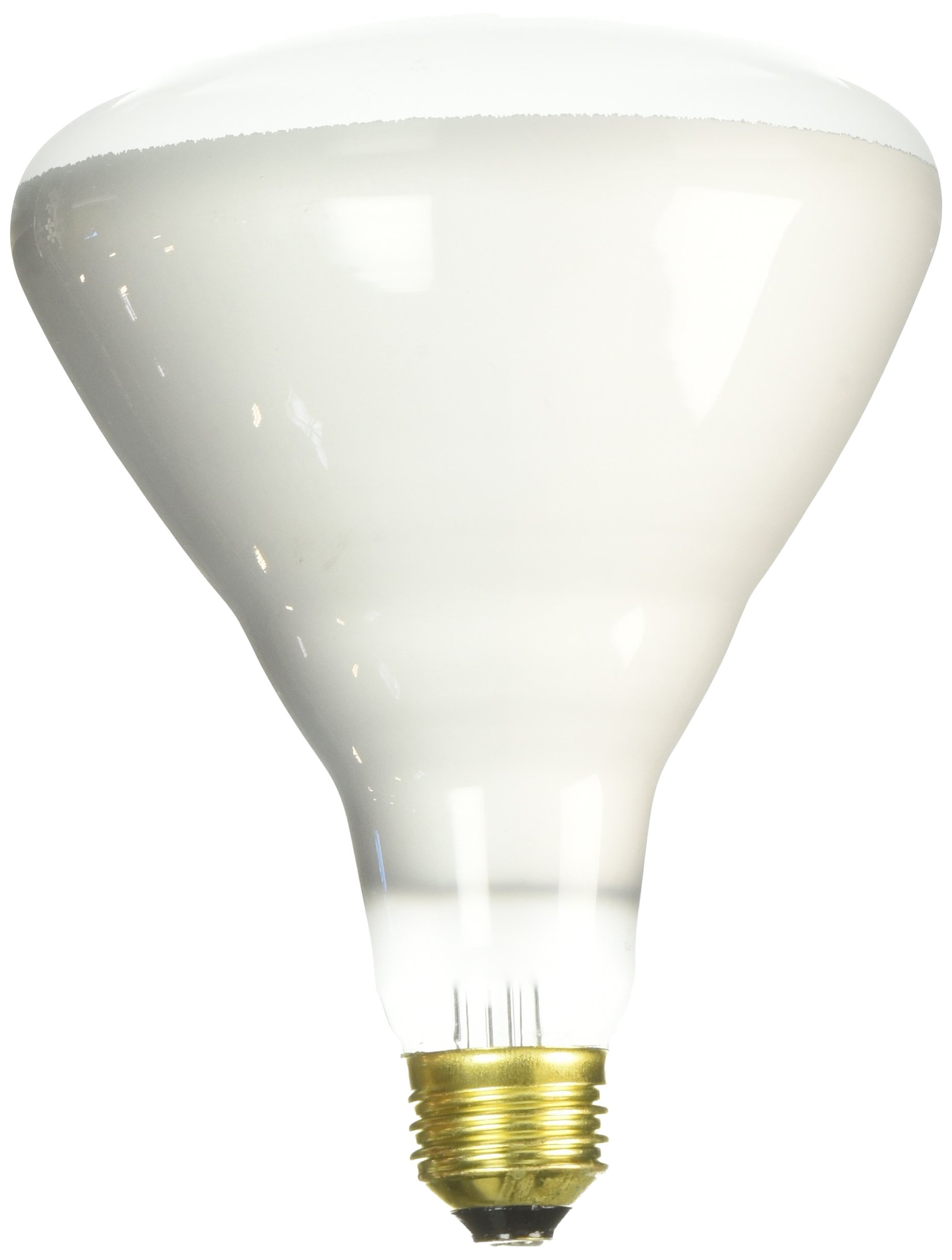 Sylvania Double Life Indoor 65 Watt Flood Light Bulb by Sylvania