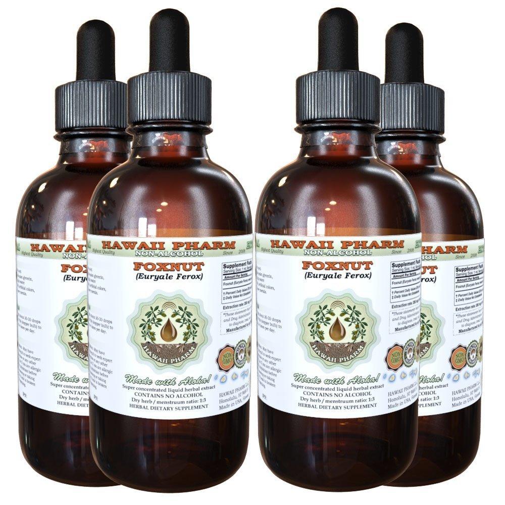 Foxnut (Euryale Ferox) Glycerite, Organic Seeds Alcohol-Free Liquid Extract, Qian Shi, Glycerite Herbal Supplement 4x4 oz
