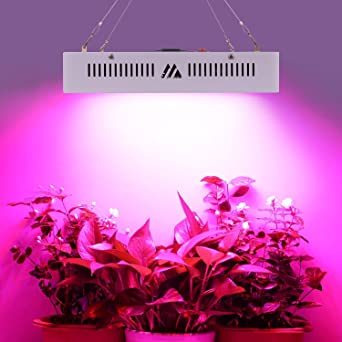 Led Pflanzenlampe Grow Lampe 1000w Vollspektrum Gewachshaus