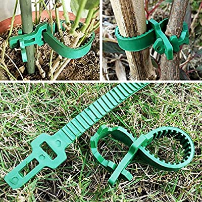 KINGLAKE 5 Pcs Tree Stake Supports Adjustable Tree Plant Ties (34cm/13.8 inch) : Garden & Outdoor