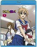 にゃんこい! 1 (Blu-ray 初回限定生産)