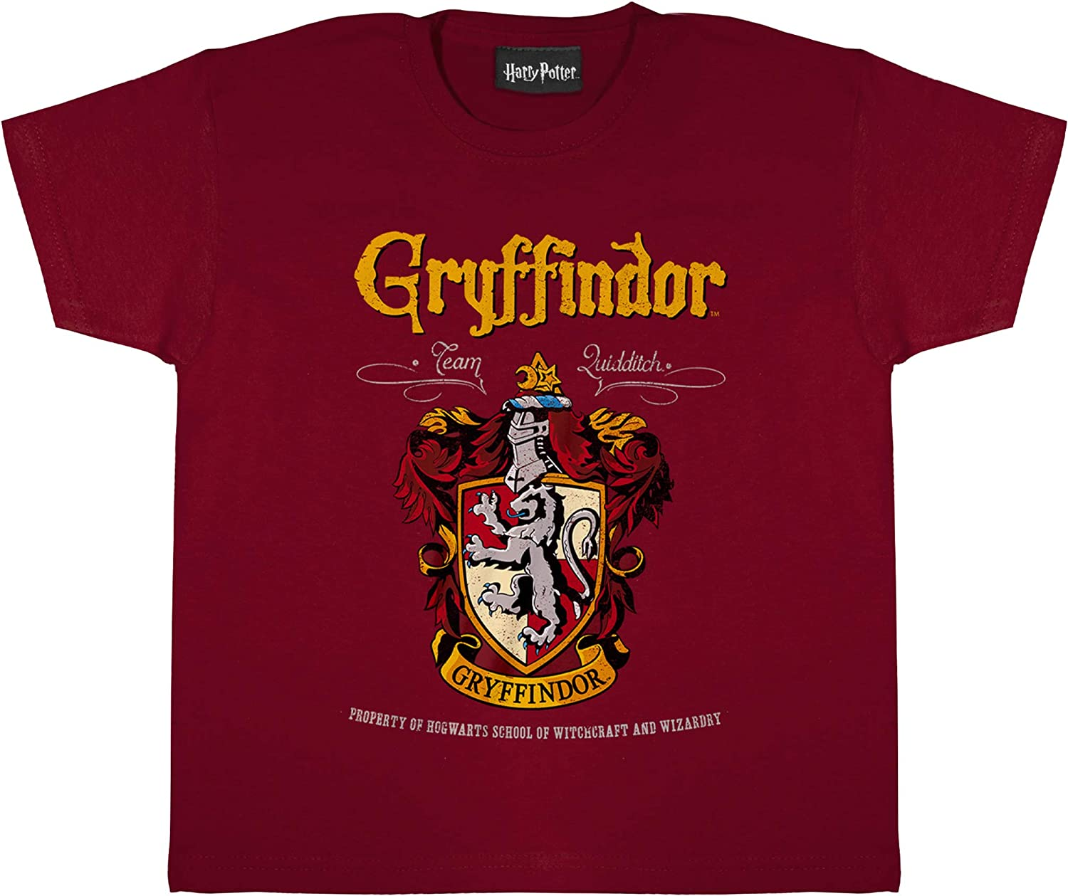 Harry Potter Gryffindor Crest Girls T Shirt Official Merchandise Ages 3 13 Harry Potter Gifts Girls Fashion Top Childrens Clothes Kids Birthday Gift Idea Amazon Co Uk Clothing
