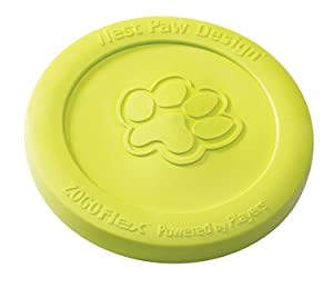 Best Durable Dog Frisbee