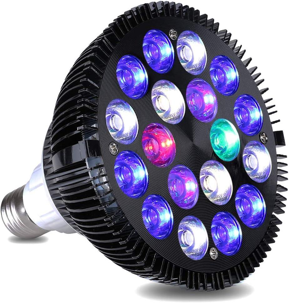 KINGBO Nano LED Light