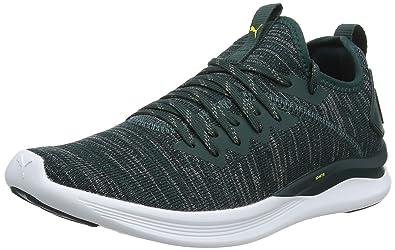 bcf02b1ded87 Puma Men s Ignite Flash Evoknit Competition Running Shoes Green ...