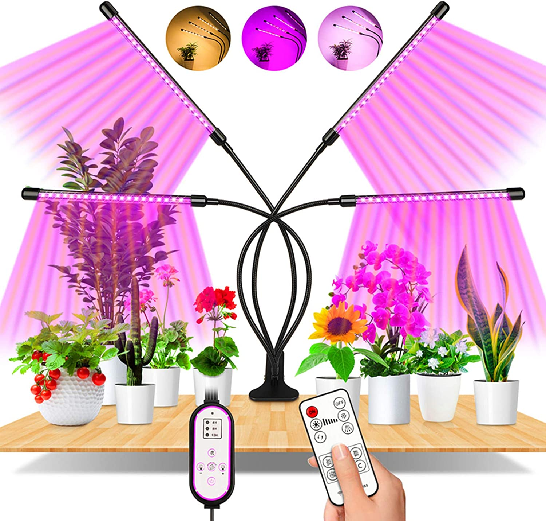 Insufficient Lighting & Harsh Temperature