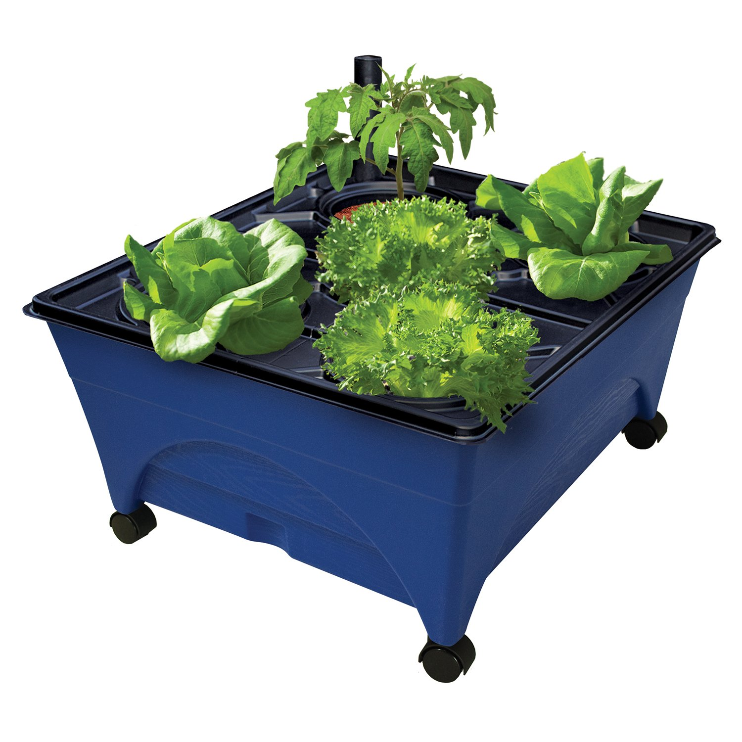 "Emsco Group 2370 Hydropickers Compact 24"" x 20"" Footprint – Mobility Provided by Casters Non-Electric Hydroponics Grow Box, Blue"