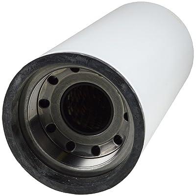 Luber-finer LFF1007 Heavy Duty Fuel Filter: Automotive