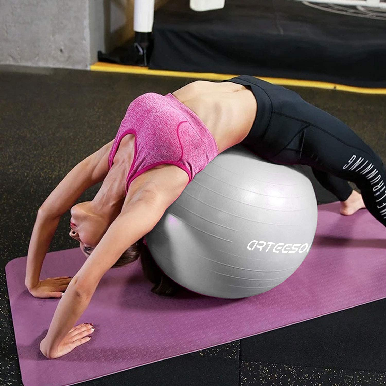 Arteesol Exercise Ball 45cm 75cm Anti-burst Anti-slip Yoga Swiss 65cm 55cm
