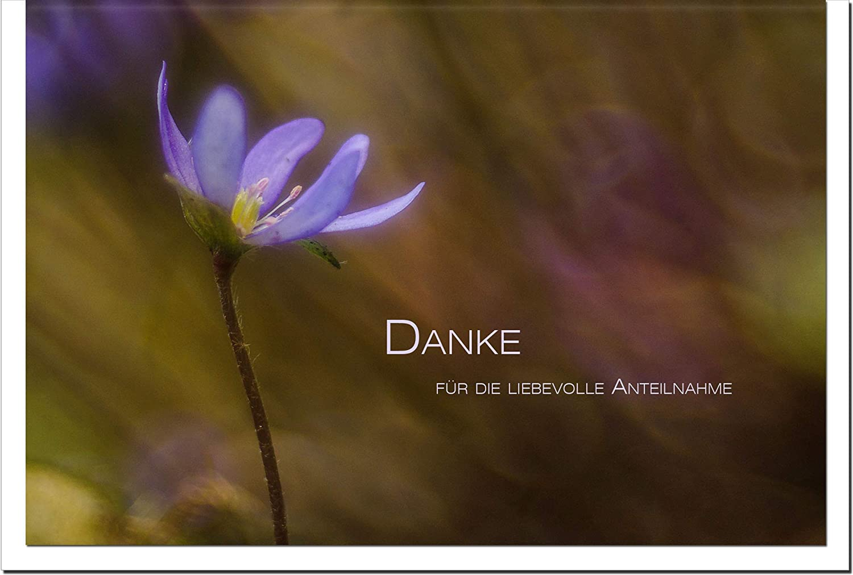 MetALUm Danksagungskarten TRAUER   Blaue Blaume   25 Karten   1525078