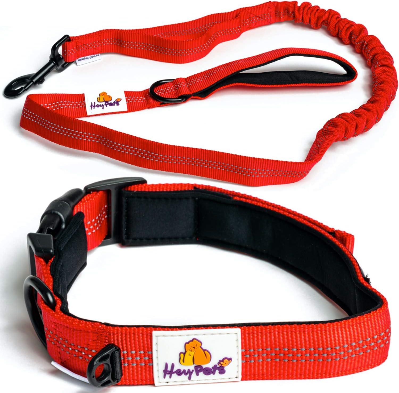 Hey Pets Premium Hundehalsband y Hundeleine como 2-1 Set š rojo Nylon-Leine y Halsband ambos, blanda gepolstert - elástica de cuerda con Anti-Zug-Funktion Ruck-Dämpfer