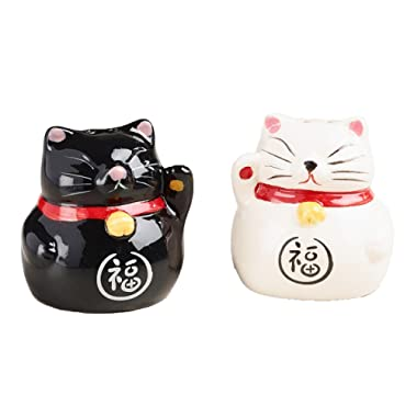 Chinese Ceramic Lucky Cat Salt and Pepper Shaker Set - Waving Arm for Good Health & Fortune