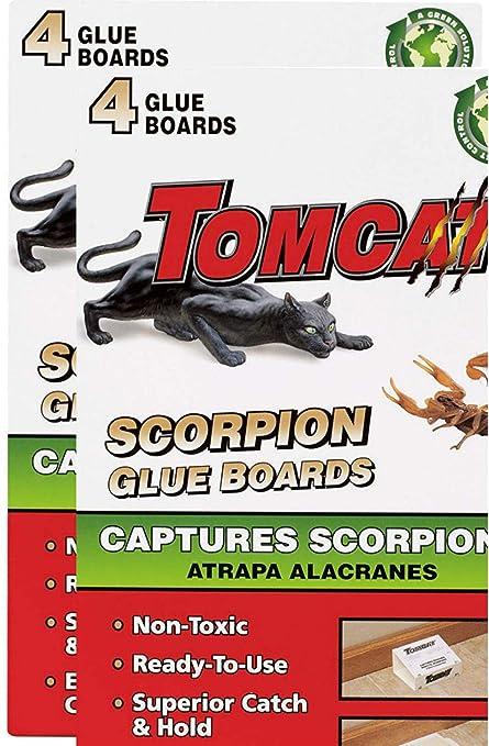 Amazon.com: Tomcat Scorpion - Lote de 4 pizarras de ...