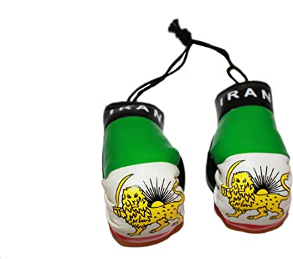IRAN COUNTRY FLAG MINI BOXING GLOVES