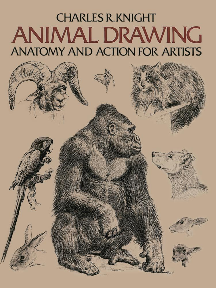 Animal Drawing Anatomy And Action For Artists Charles R Knight