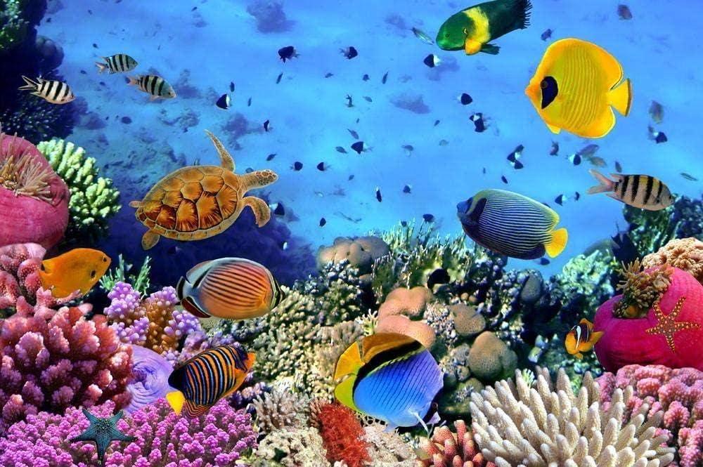 CHXFit Diversas Criaturas en el Agua aptas para niños y Adultos Principiantes Pintura Digital DIY Pintura Decorativa Pintada a Mano Pura Presente-40x50cm