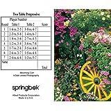 Springbok Puzzles Blooming Cart Bridge Tally Sheets