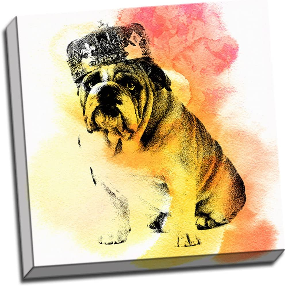 16×16 Bulldog King Watercolor Painting Stretched Canvas