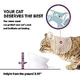 Y YHY Ceramic Raised Cat Food Bowl, Slanted Cat