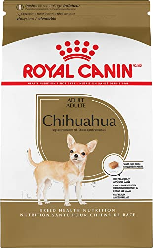 Royal-Canin-Chihuahua-Adult-8+-Breed-Specific-Dry-Dog-Food-for-Senior-Dogs
