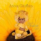 Anne Geddes Signs of the Zodiac 2017 Calendar