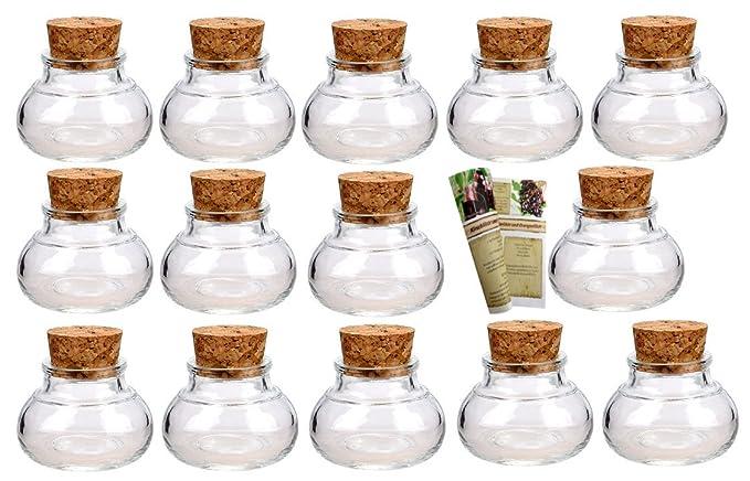 Korken und 28-seitige Flaschendiscount-Rezeptbrosch/üre f/ür Gastgeschenke gouveo 24er Set kleine Korkengl/äser Mini 50 incl Korkenglas eckig Glasdose Aufbewahrungsglas Gew/ürze