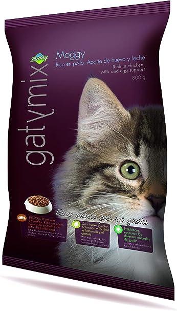 Dibaq Gatymix Moggy - 800 gr: Amazon.es: Productos para mascotas