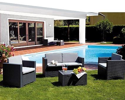 PASO - Limpiador Muebles Jardin Paso 1 L: Amazon.es: Salud y cuidado ...