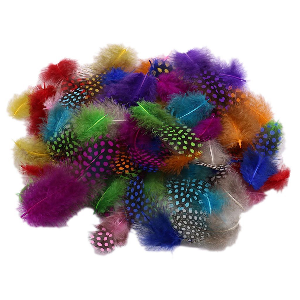100 Spotted Feathers spotted Craft Collage Feathers Millinery Pack FLY FISHING COLOURs Bee Different Ltd