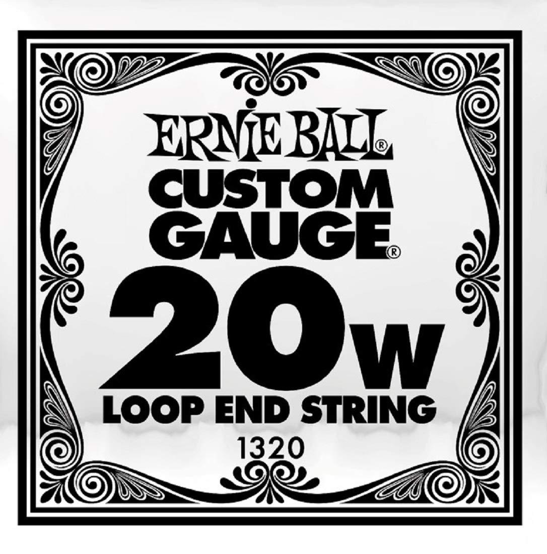 Ernie Ball P01320 (1320) .020 Loop End Stainless Steel Wound Banjo or Mandolin Guitar SINGLE String
