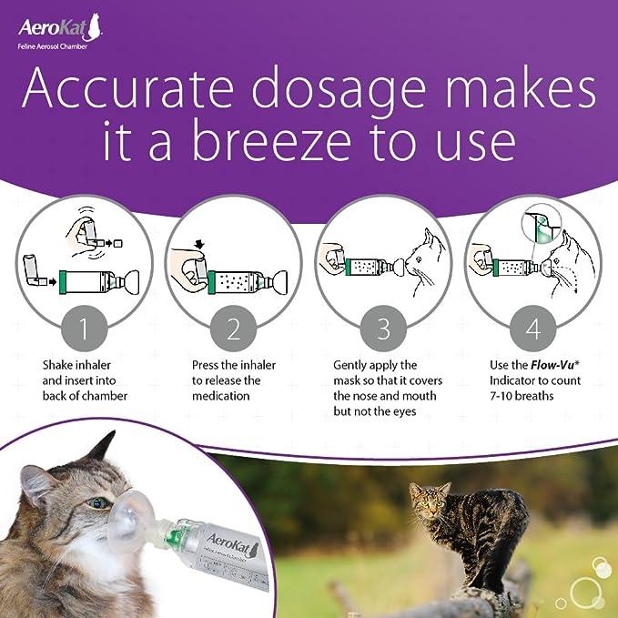 amazon com aerokat cat asthma aerosol chamber easy to use