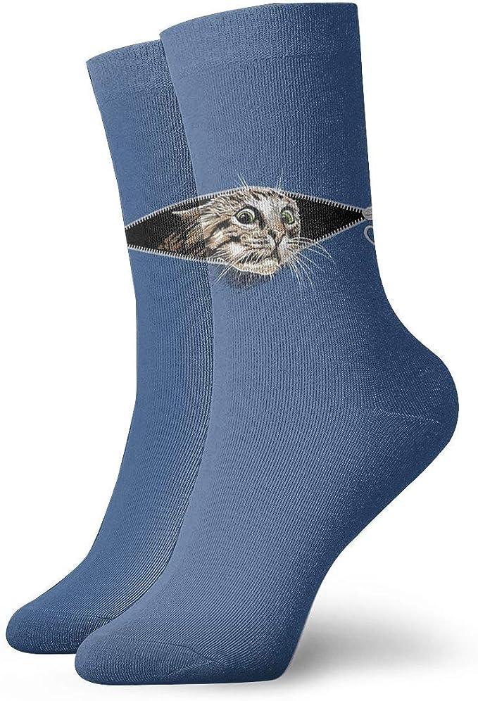 Abfind Gato con cremallera Divertidos gatos que se esconden ...