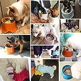 Super Design Elevated Dog Bowl Raised Dog Feeder