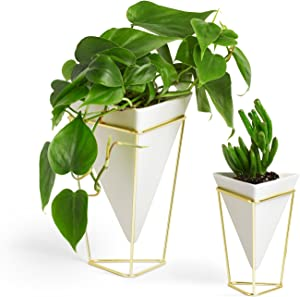 Umbra Trigg Geometric Planter, Wall and Desk Decor Ceramic Containers and Vases-for Succulents, Air, Mini Cactus, Faux Plant, White/Brass