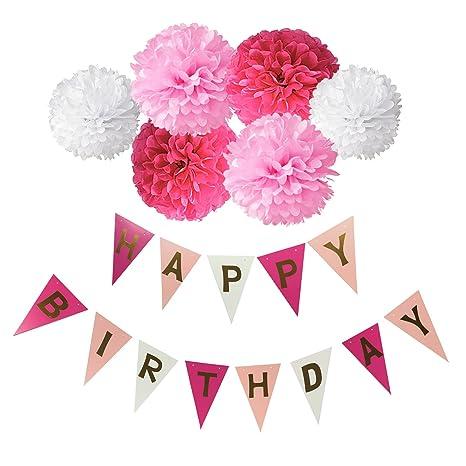 Deco Joyeux Anniversaire Wartoon Happy Birthday Bannière Banderole Joyeux Anniversaire 6 Paquets Rose Pompon Papier De Soie Boules De Fleur