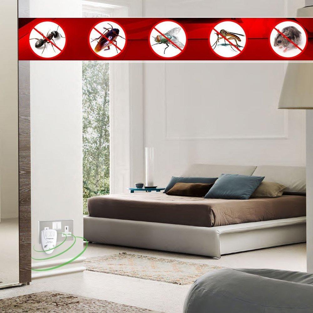 Ultrasónica repelente de plagas electrónico enchufe en cucaracha rata roedores Mosquito Fly arañas insectos ratón hormigas insectos Control de plagas para ...