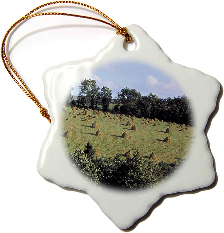 3dRose Ireland, Letterkenny. Farm hay Stacks, Co. Dongal - EU15 RER0033 -. - Ornaments (ORN_82030_1)