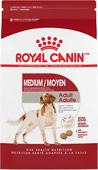 The Best Pro Canin Dog Food