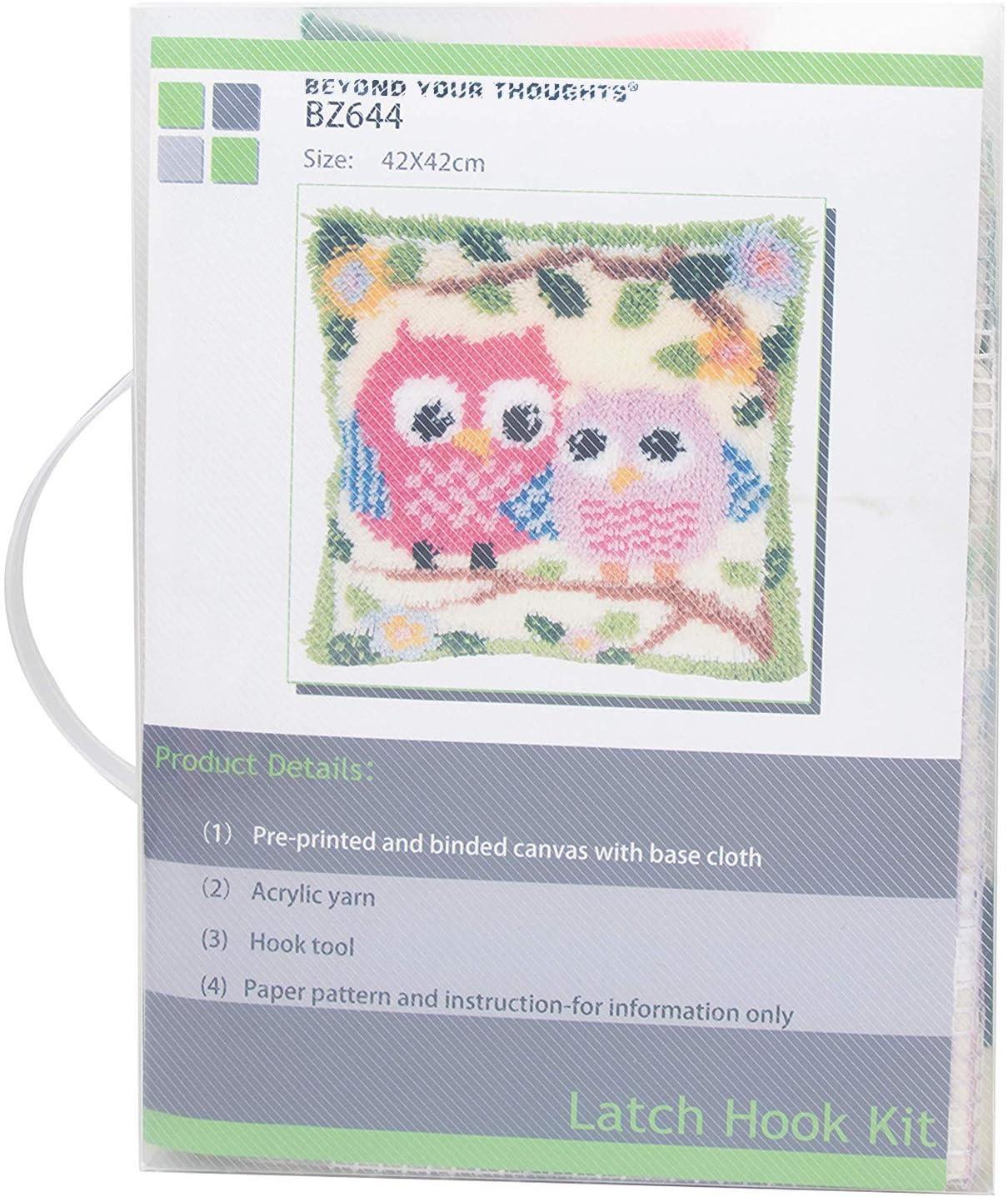 Flower /& Bird Pattern Latch Hook kit Pillow Making Kit Includes Basic Tool