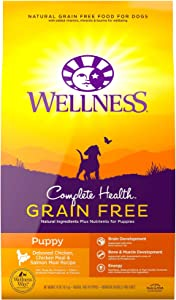 Wellness Complete Health Natural Grain Free Dry Puppy Food, Chicken & Salmon, 24-Pound Bag