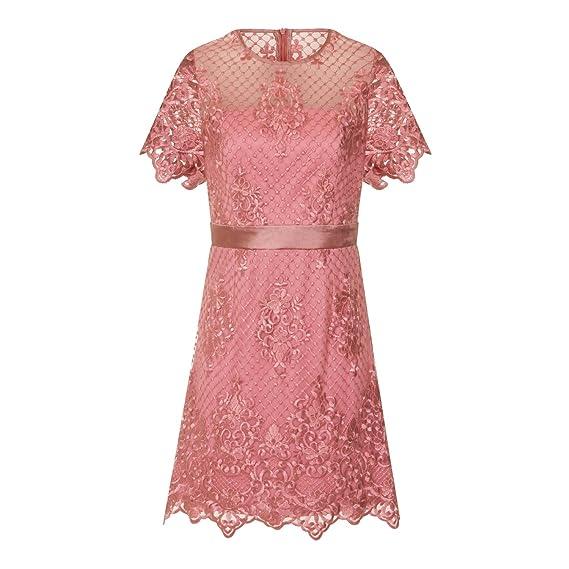 d815e49ece3 Girls On Film Womens Ladies Short Sleeve Lace Mini Dress (10) (Dusty ...