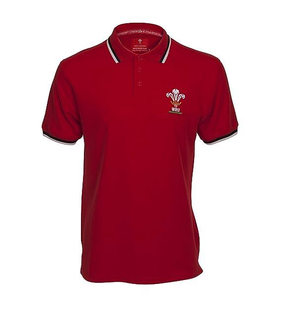 Wales Rugby Union Classic Polo, Hombre: Amazon.es: Ropa y accesorios