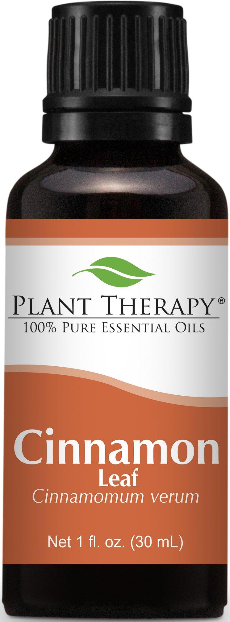 Plant Therapy Cinnamon Leaf Essential Oil. 100% Pure, Undiluted, Therapeutic Grade. 30 ml (1 oz).