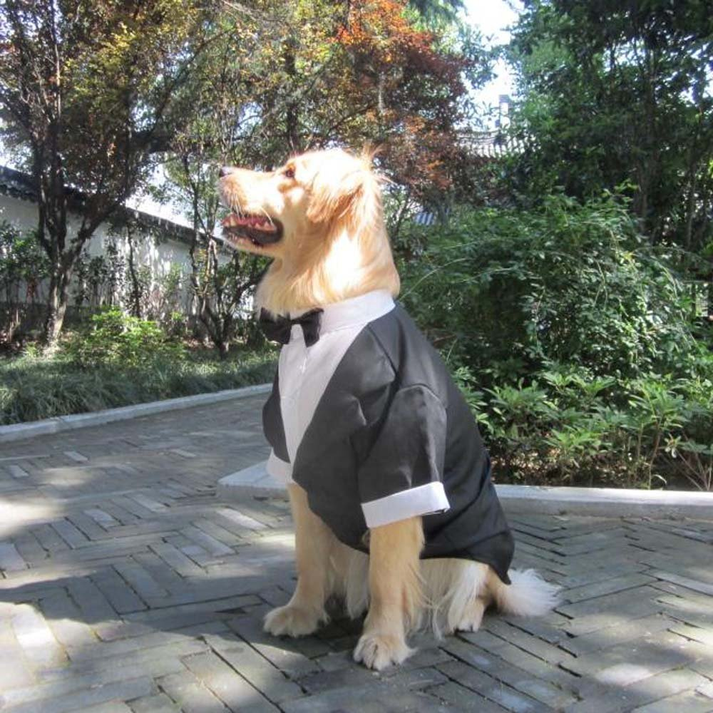 Evursua Large Dog Tuxedo Wedding Party Suit,Dog Costumes Large Dogs Golden Retriever Samo Bulldogs,Gentleman Dog Attire Bowite (black, XL) by Evursua (Image #3)